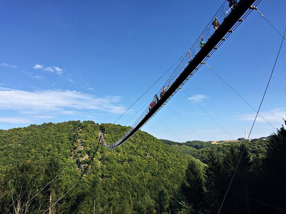 Geführte MTB Tour Hängeseilbrücke in Mörsdorf